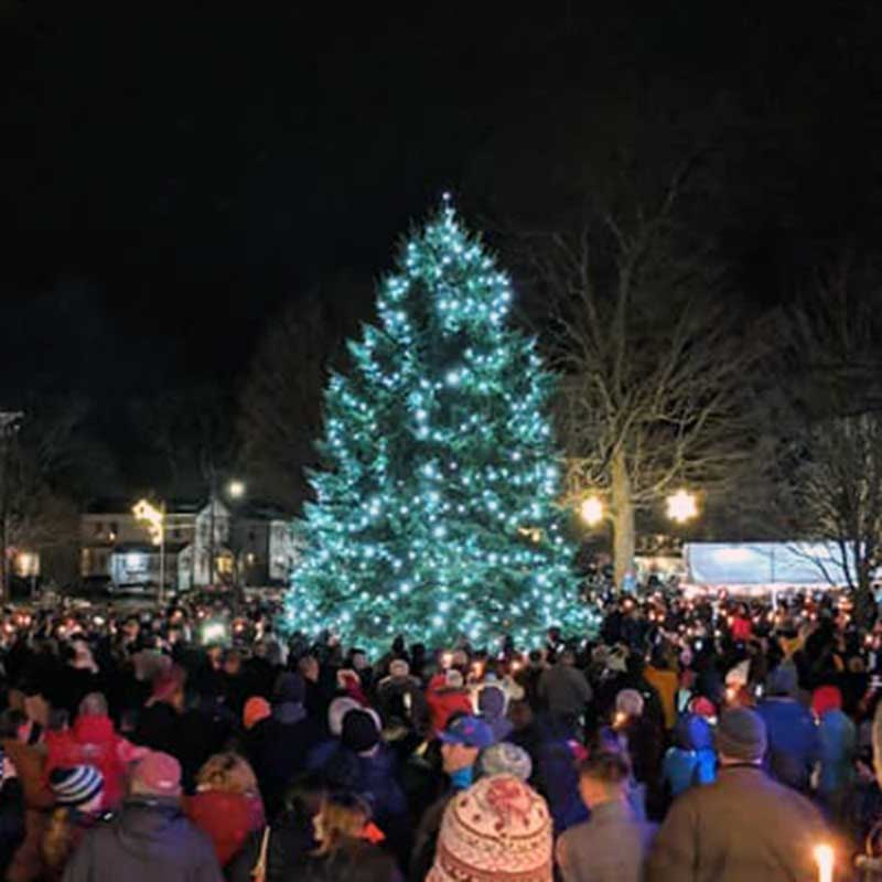 Tree Lighting at Winter Light Night